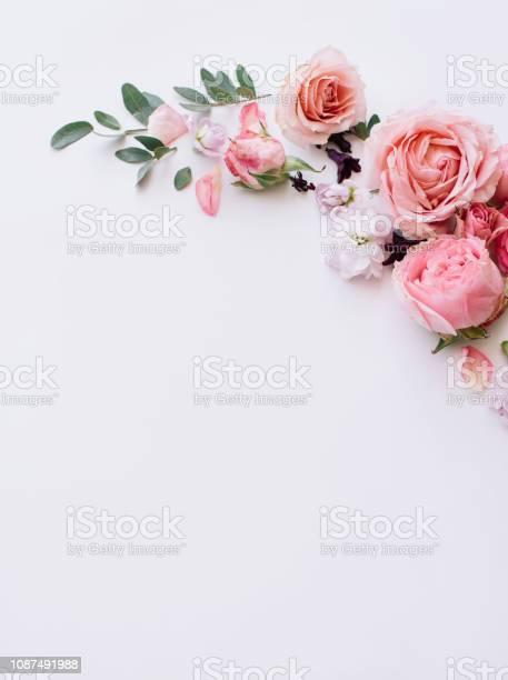 Photo of Beautiful tender blossoming floral frame of pink roses, eustoma, mattiola, tulips, eucalyptus on the white background, top view, flat lay