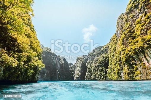 istock Beautiful Thai Vegetation In The Sea 1153893519