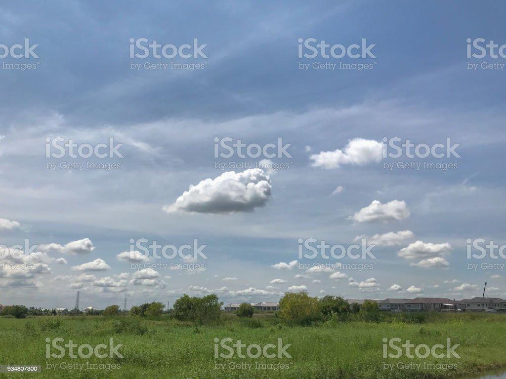 아름 다운 두꺼운 솜 털 구름과 잔디 필드 - 로열티 프리 0명 스톡 사진