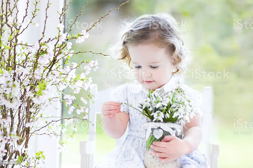 Beautiful toddler girl holding first spring flowers in transparent vase stock photo