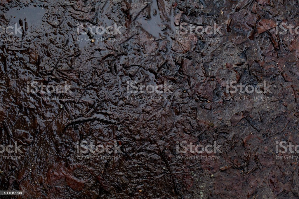 Beautiful top view of autumn damp mud ground puddle background royalty-free stock photo