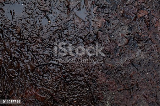 Beautiful Top View Of Autumn Damp Mud Ground Puddle Background Stock Photo & More Pictures of Abstract