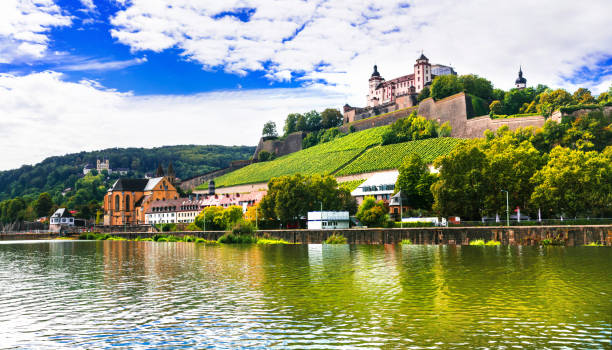 beautiful towns of germany - wurzburg, view with vineyrds and castle - main stock-fotos und bilder