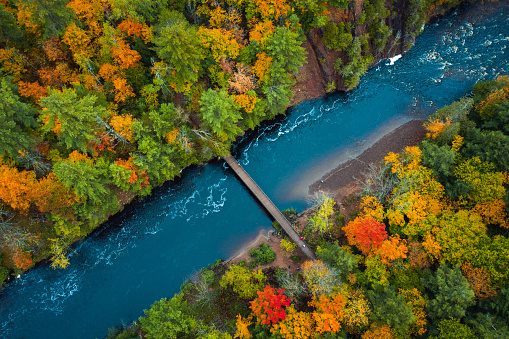 Beautiful travel or tourism style look down aerial of pedestrian foot bridge across the Bad River at Copper Falls park with colorful fall foliage lining the river banks in autumn in Mellen, Wisconsin.