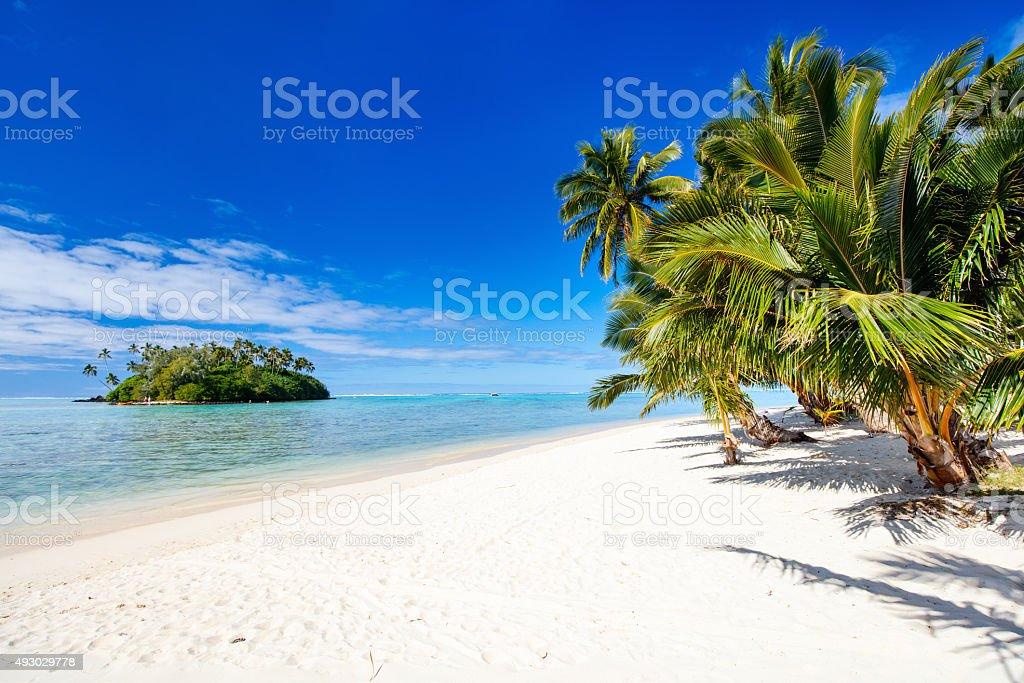 Wunderschönen tropischen Strand in der exotischen Insel im Pazifik – Foto