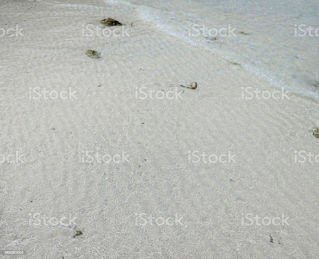 美麗的熱帶海灘 - 免版稅乾旱氣候圖庫照片
