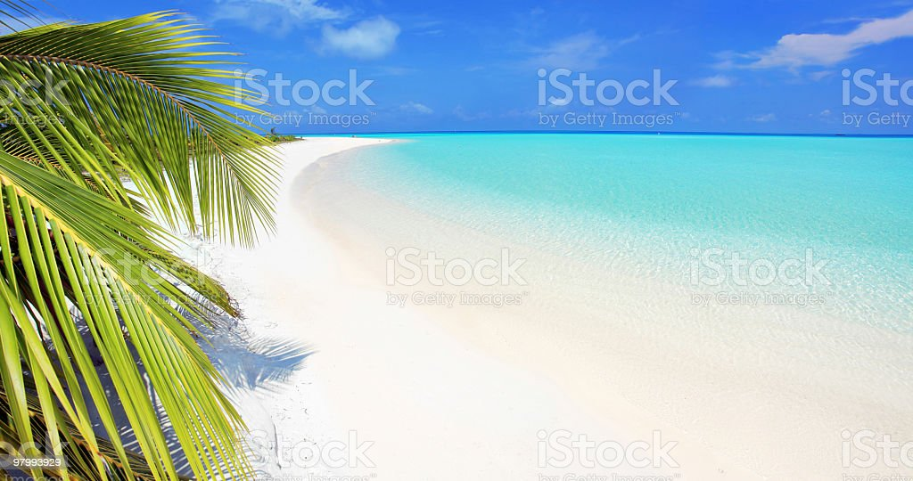 Beautiful tropical beach. royalty-free stock photo