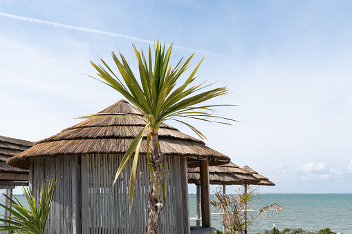 Beautiful tropical beach with straw umbrella and palm with hut restaurant cafe coffee