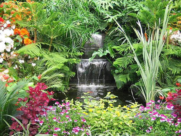 wunderschönen tropischen gärten - indoor wasserbrunnen stock-fotos und bilder