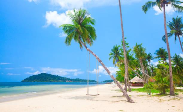 Wunderschönen tropischen Insel Strand mit Kokospalmen und Schaukel – Foto