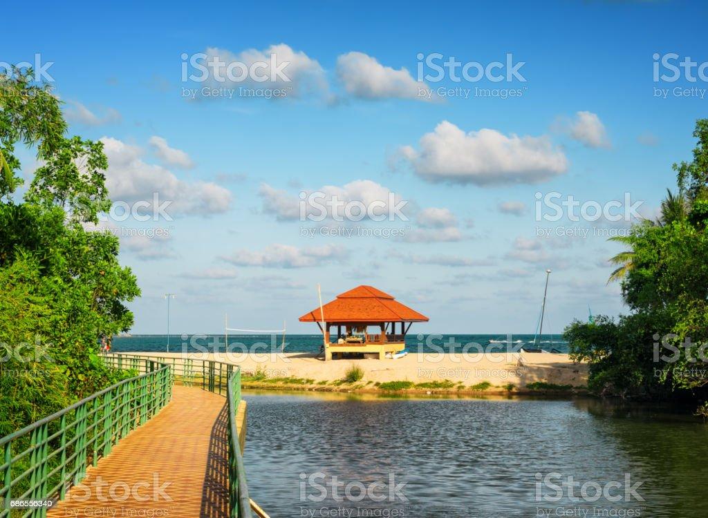 Mooi tropisch landschap. Eiland van Samui, Thailand royalty free stockfoto
