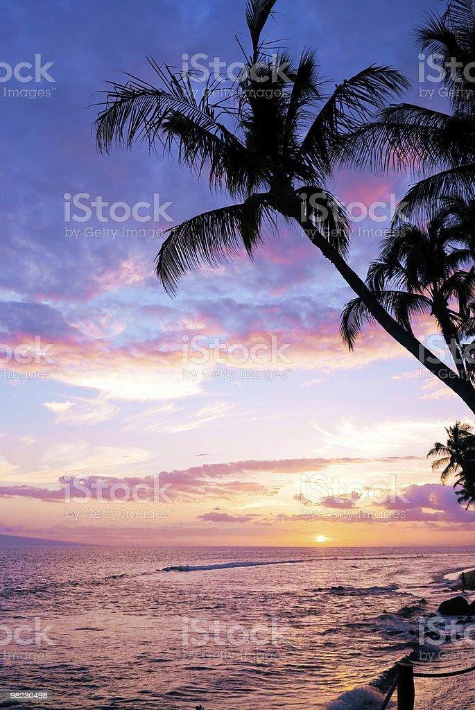 Beautiful Tropical Sunset royalty-free stock photo