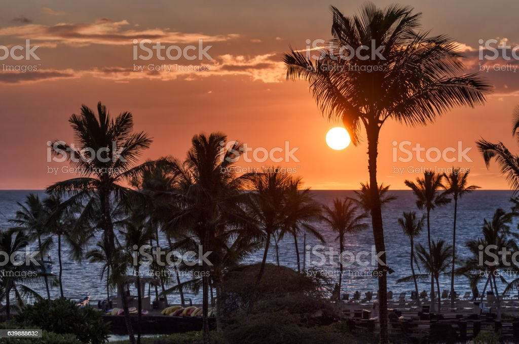 Beautiful tropical sunset with palm tree silhouettes and red sky stock photo