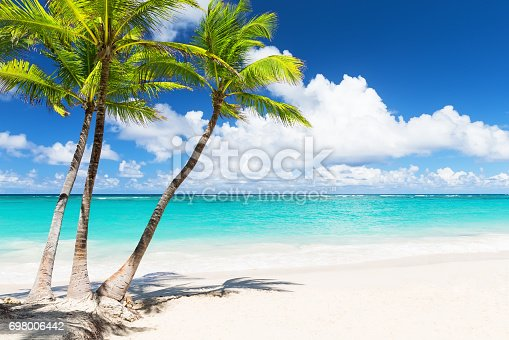 istock Beautiful tropical white beach and coconut palm trees 698006442