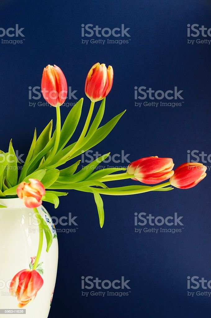 Beautiful Tulips in a Vase royalty-free stock photo