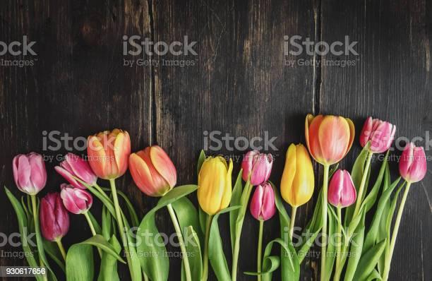 Beautiful tulips on wood picture id930617656?b=1&k=6&m=930617656&s=612x612&h=znufxdmddzotulvszqjw4 8div2vzjdmgeyx6naj6jo=