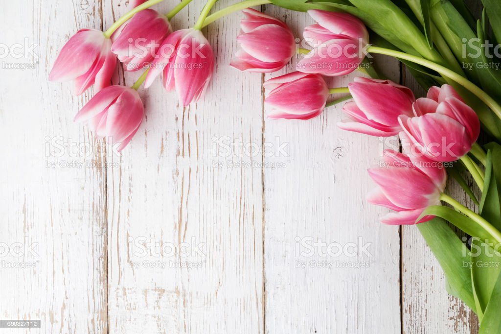 beautiful tulips on wooden background. Top view stock photo
