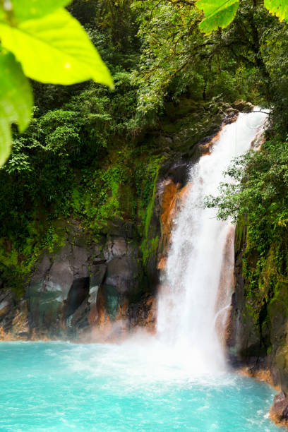 Beautiful Turquoise water of Rio Celeste Waterfall - Nature Phenomen of Costa Rica Beautiful Turquoise water of Rio Celeste Waterfall - Nature Phenomen of Costa Rica. arenal volcano stock pictures, royalty-free photos & images