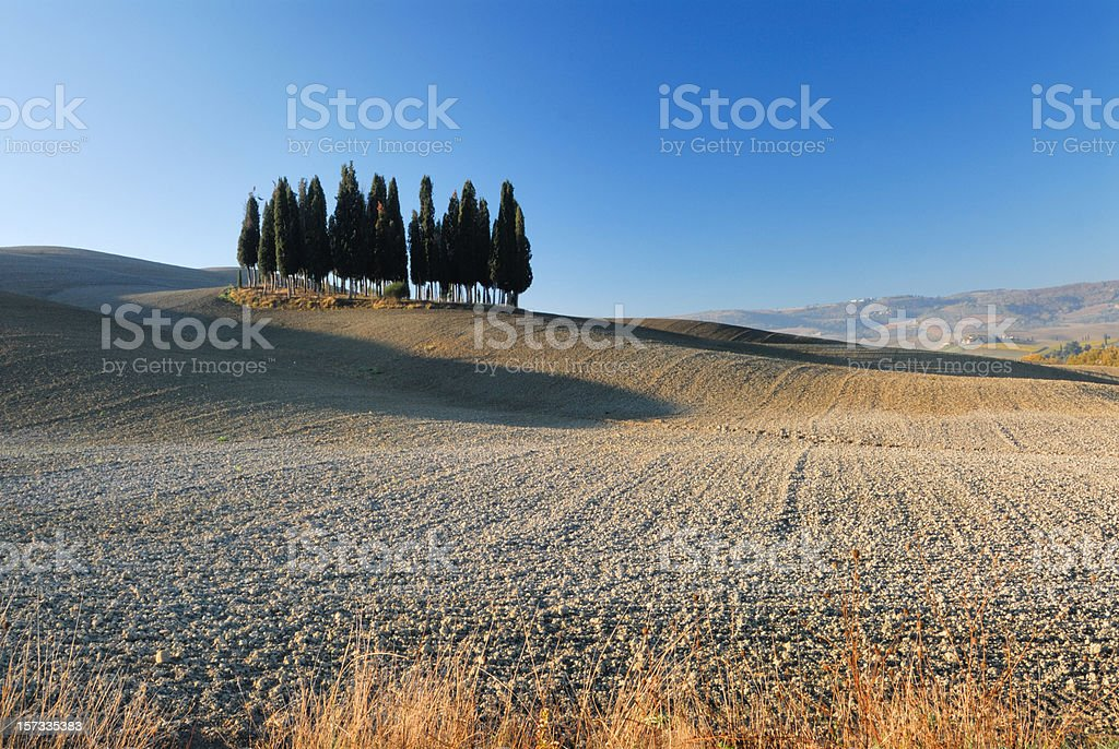 Beautiful Tuscany landscape royalty-free stock photo
