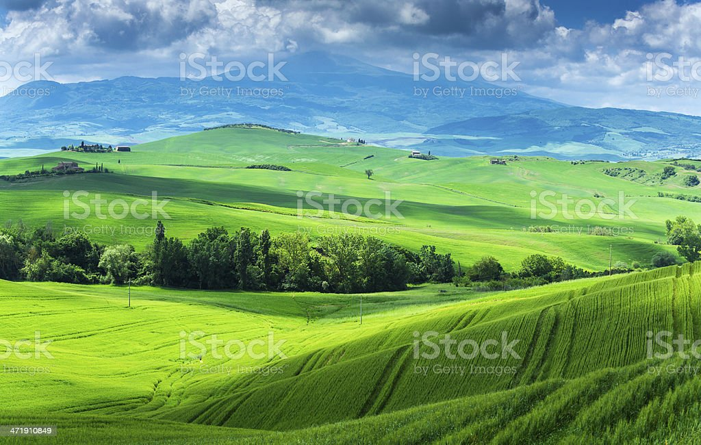 Beautiful Tuscany royalty-free stock photo