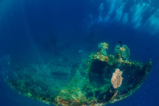 beautiful underwater view with bubbles and corals at shipwreck - wreck diving stock pictures, royalty-free photos & images