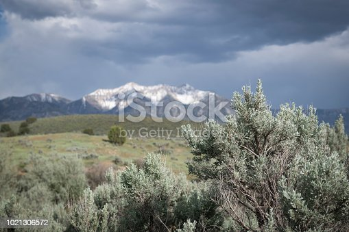 Beautiful scene of sage brush and snow-capped mountains. Focus on sage brush in foreground and out of focus Utah mountains in background. Storm clouds rolling in.