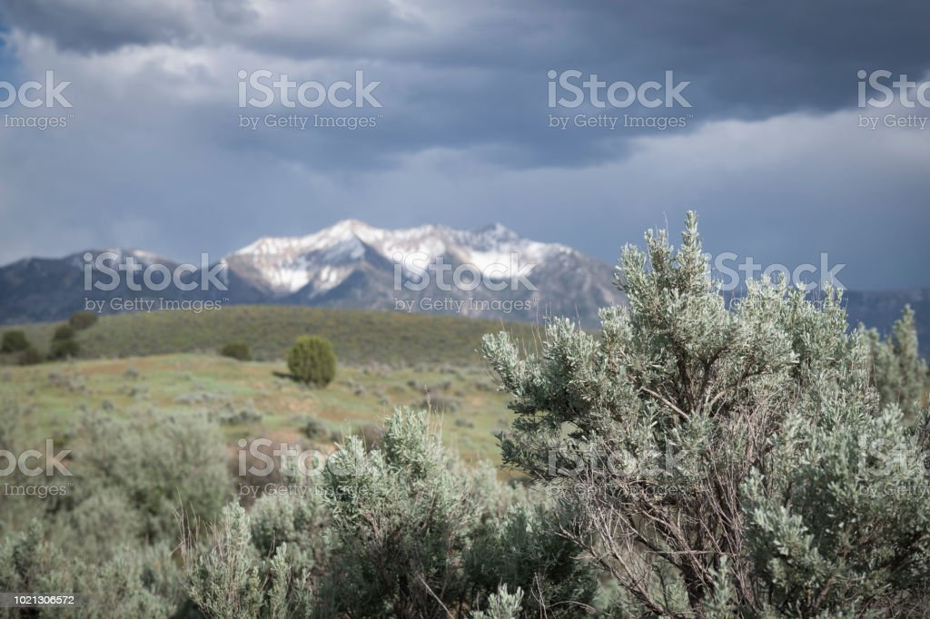 Beautiful Utah landscape of sage brush and snow-capped mountains stock photo