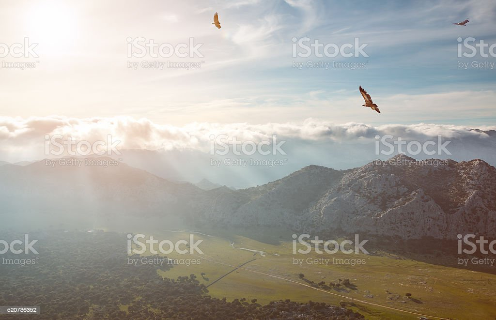 Beautiful valley at sunset stock photo