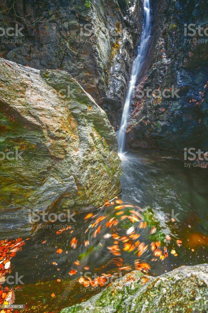 Beautiful veil waterfalls, mossy rocks, rotating leaves in mate colors stock photo