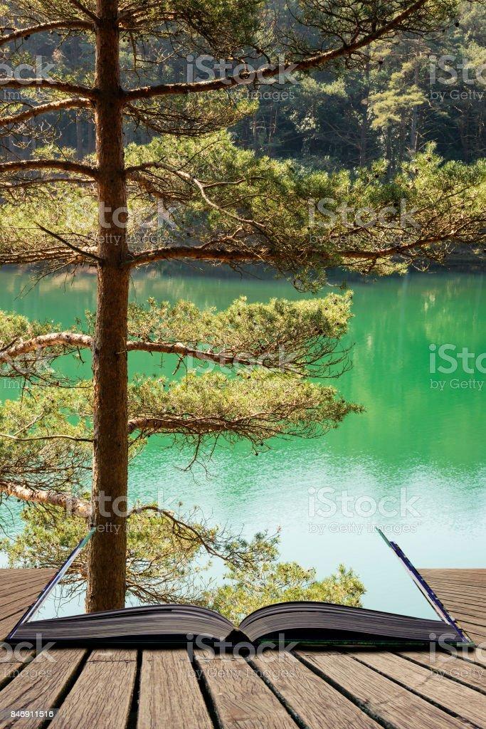 Fotografía de Hermoso Paisaje Vibrante Imagen Del Viejo Lago De ...