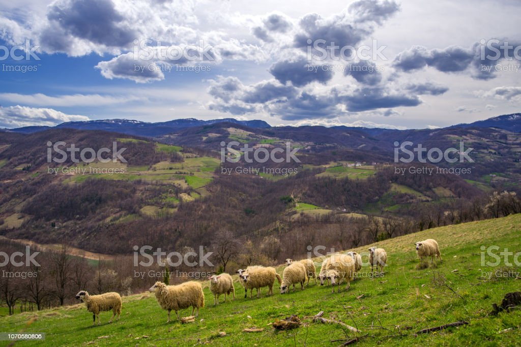Beautiful vibrant mountain scenery royalty-free stock photo