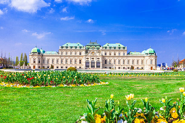 beautiful vienna,austria - vienna stock photos and pictures