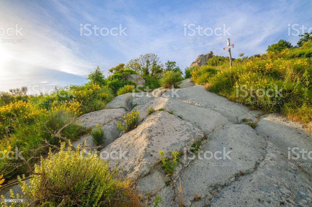 Beautiful view from path to Mount Epomeo, Ischia Island, Italy stock photo