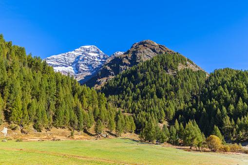 Beautiful view in Loetschental valley