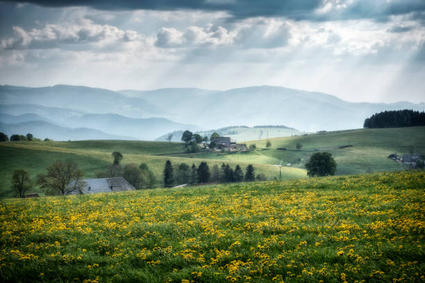 beautiful view landscape south Germany An image of a beautiful view landscape south Germany black forest stock pictures, royalty-free photos & images
