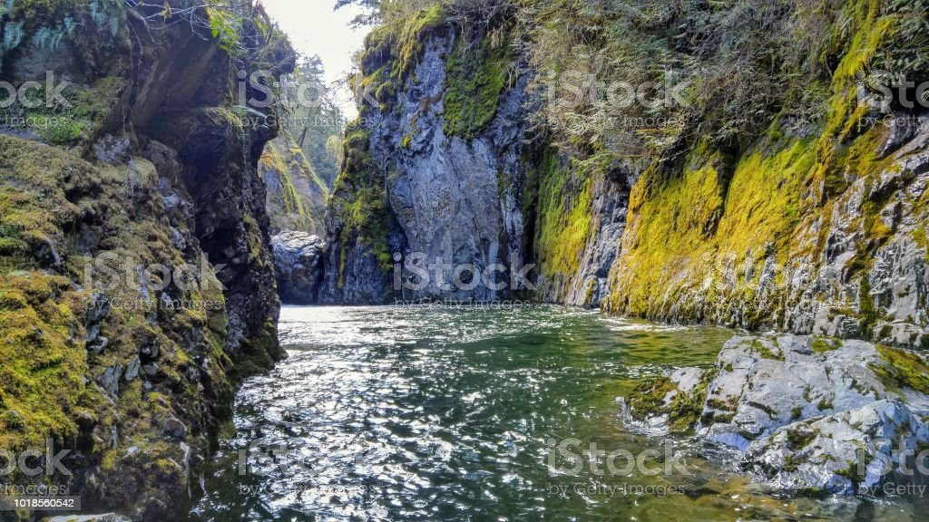 A beautiful view of a gully up the Englishman River in spring stock photo