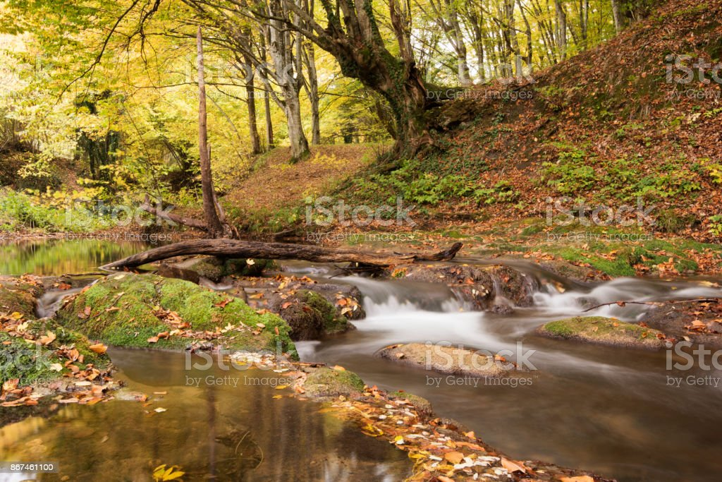 Beautiful view of a river in the forest, Strandzha mountain, Bulgaria. Autumn forest stock photo