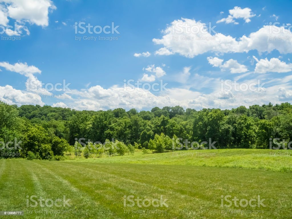 Beautiful View of a Spring Field, Treeline and Cloud Filled Skies stock photo