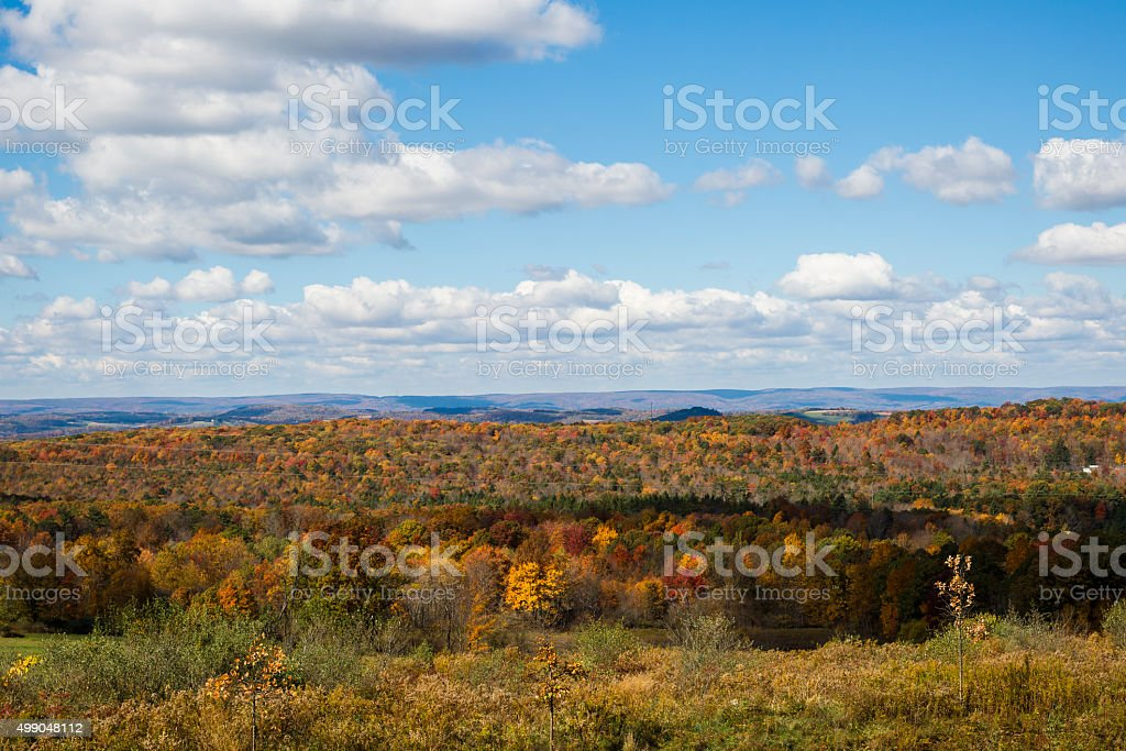 Beautiful View of Autumn Trees  and Cloud Filled Sky stock photo