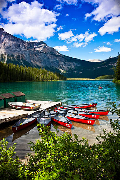 A beautiful view of canoes on Emerald Lake Canoes infront of Emerald Lake Banff Alberta emerald lake stock pictures, royalty-free photos & images