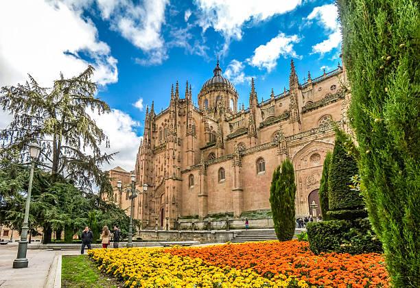 Herrlichen Blick auf die Kathedrale von Salamanca, region Castilla y Leon – Foto