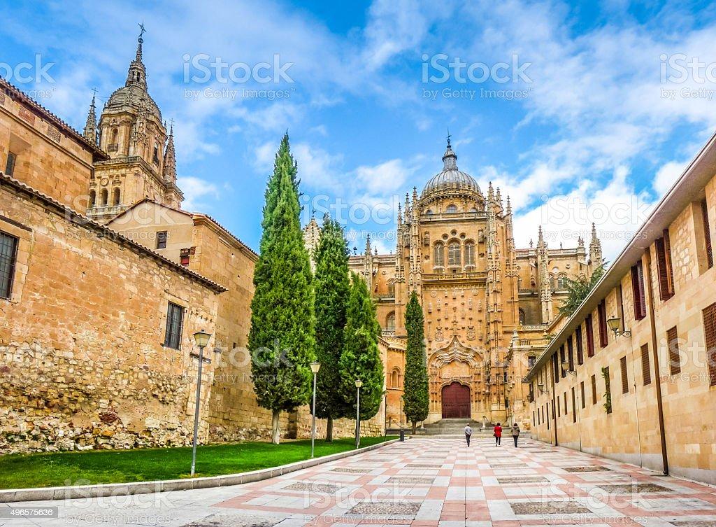 Beautiful view of Cathedral of Salamanca, Castilla y Leon region stock photo