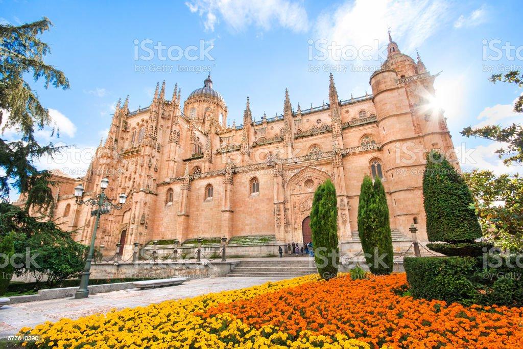 Beautiful view of Cathedral of Salamanca, Castilla y Leon region, Spain stock photo
