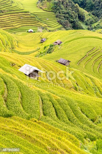 607590542istockphoto beautiful view of house in rice terrace 487945952