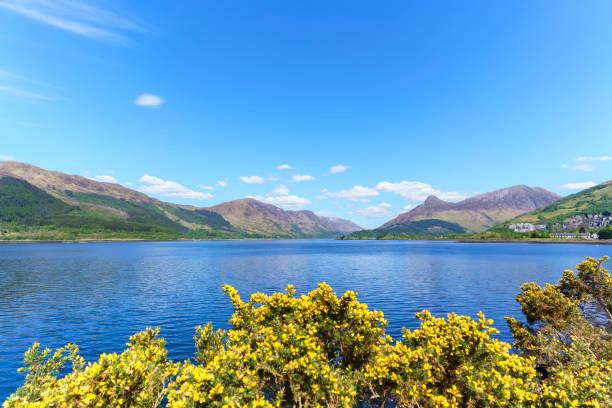 schöne aussicht auf loch leven in glencoe im sommer , schottland - see loch leven stock-fotos und bilder