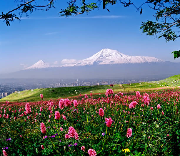 Beautiful view of Mount Ararat. stock photo