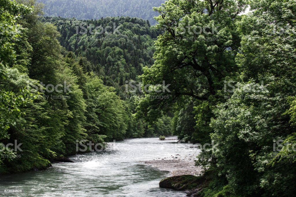 Beautiful view of mountain forest river in cloudy day. stock photo