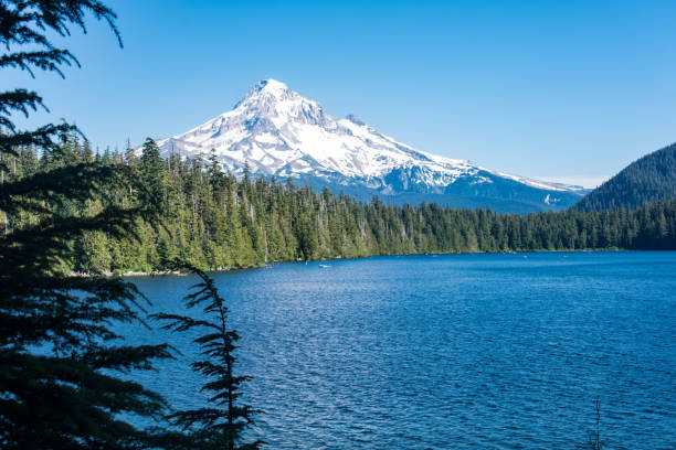 Beautiful view of Mt. Hood from Lost Lake Oregon on a sunny day Beautiful view of Mt. Hood from Lost Lake Oregon on a sunny day mt hood stock pictures, royalty-free photos & images