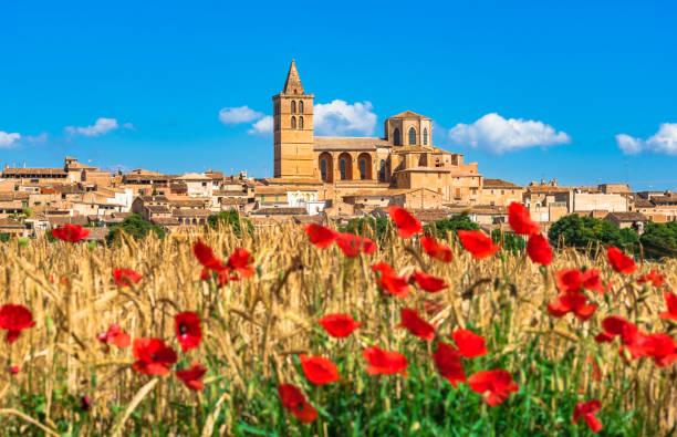 Belle vue sur le vieux village méditerranéen de Sineu, avec beau champ de fleurs de pavot, Majorque Espagne - Photo