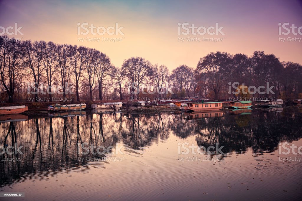 A beautiful view of reflection of houseboats and trees on Dal Lake in Srinagar stock photo